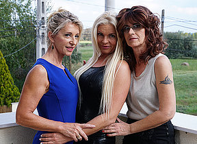 Three frying of either sex gay housewives speed rejected